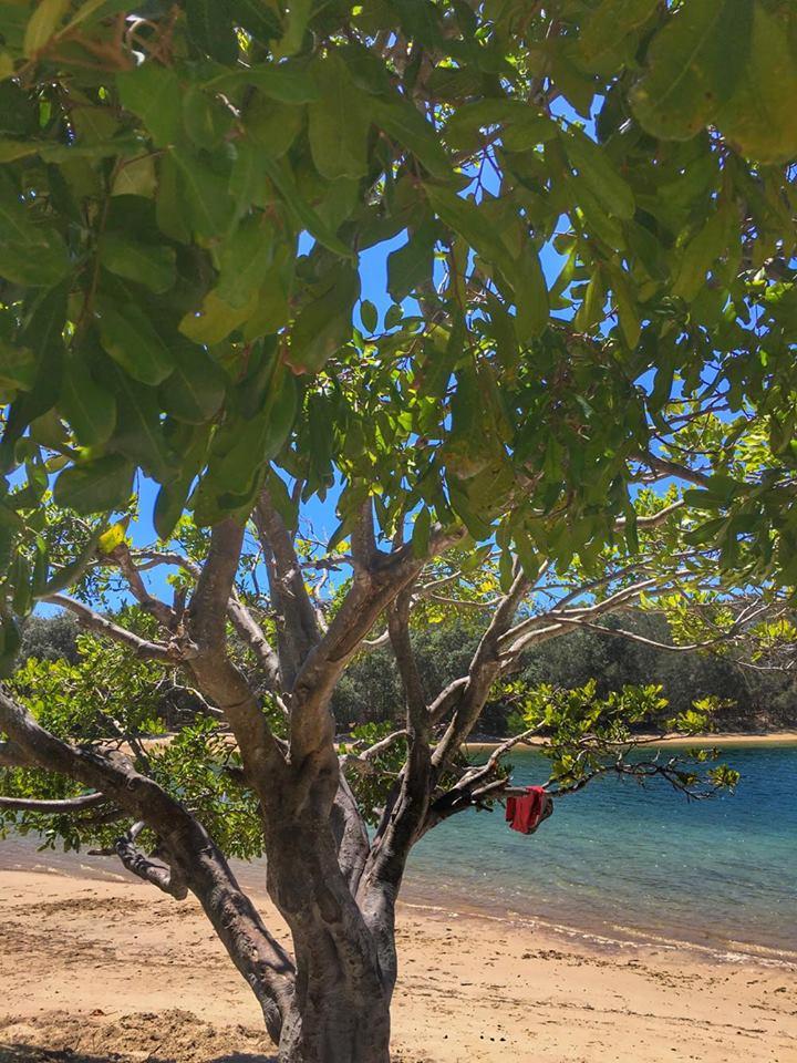 palm-beach-4