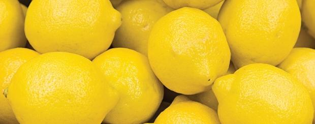 lemon ess.jpeg
