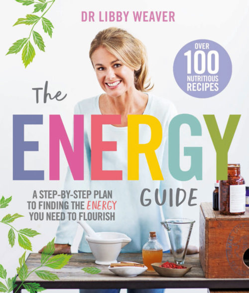 the-energy-guide-cover-500x587