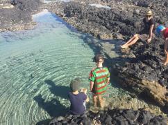 Dr Mays Island 3