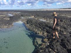 Dr Mays Island 4